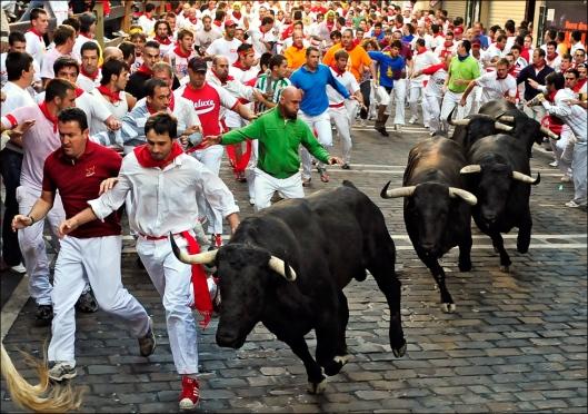bulls06